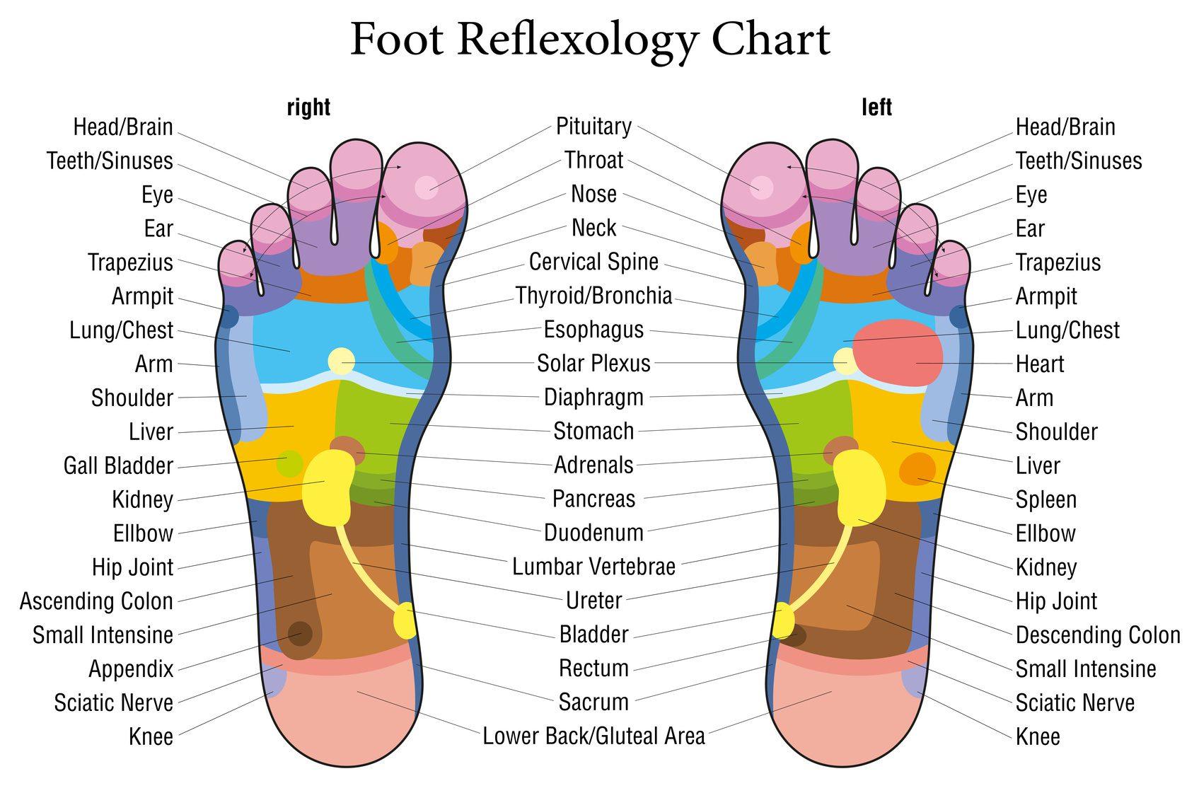 foot reflexology massage mat chart trigger points reflex zones
